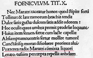 """Strabo """"Hortulus"""" TIT X"""